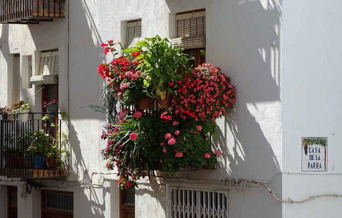 Comment bien fleurir son balcon ?